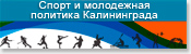 Спорт и молодежная политика Калининграда